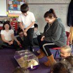 Rachel and Bella's visit to Port Ellen Primary School