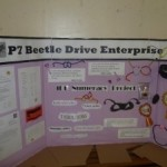 DPS Beetle Drive 1