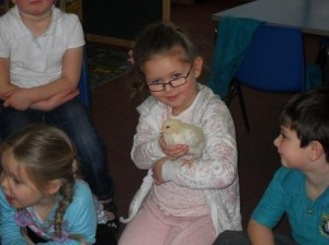 Rosneath chicks assembly 3