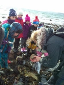 Innellan and Toward 2 Beach Science 2