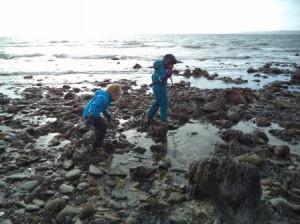 Innellan and Toward 6 Beach Science 6