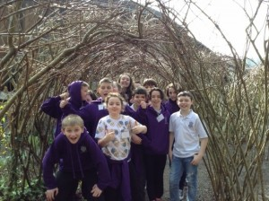 St Muns willow (2)