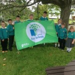 Rosneath Green Flag 2