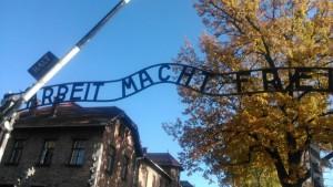 DGS Auschwitz 2