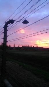 DGS Auschwitz 3