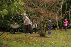 North Bute Victorian Gardening 1