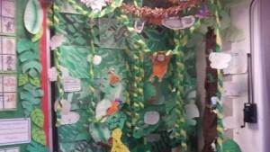 Rockfield rainforest3
