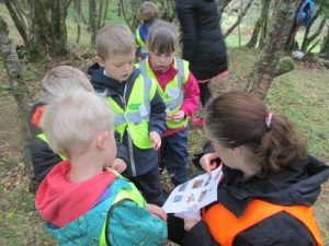 park-ps-forest-schools