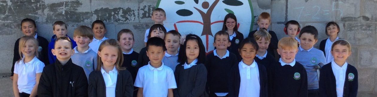 Abbotswell Primary 4/5 2020_21