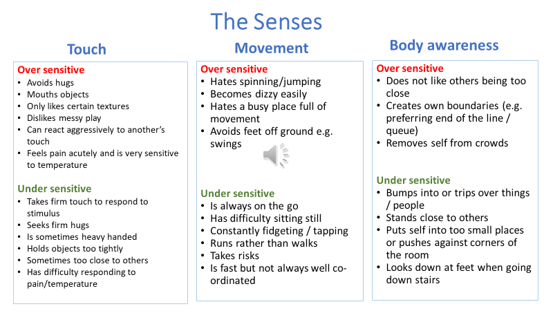 The Senses Touch, Movement, Body awareness