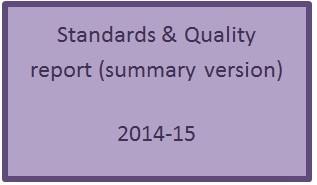 SQ Report 2015 Summary