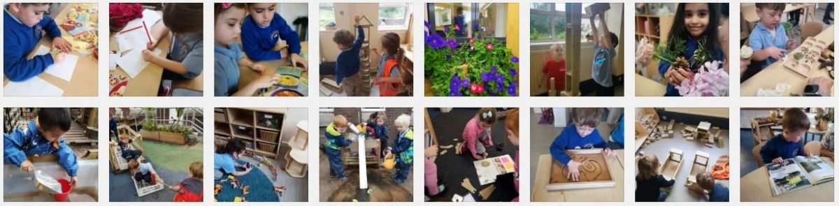 Braidbar Nursery Blog
