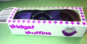 Example of Muffin Box
