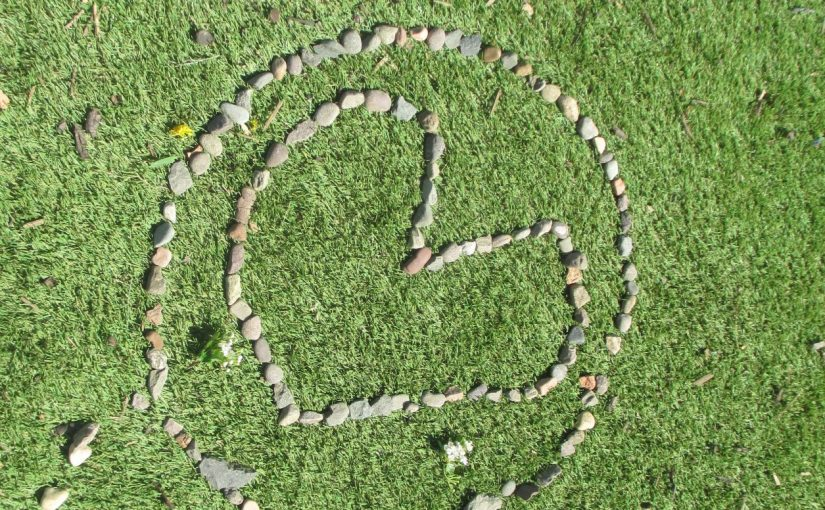 Image result for andy goldsworthy