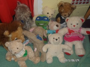 Teddy Bears Picnic 022