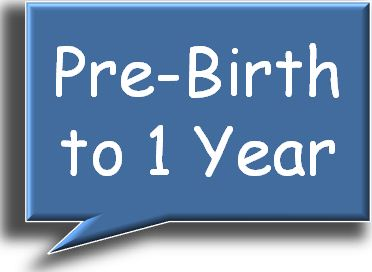 Pre-Birth to 1 Year
