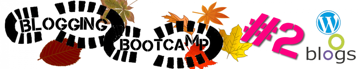 Blogging Bootcamp #2
