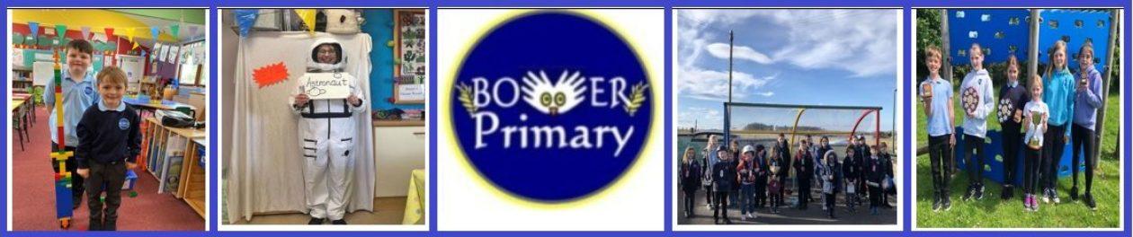 Bower Primary School