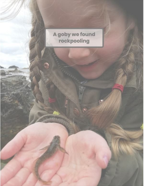 holding a goby