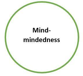 Mind-mindedness