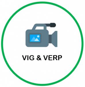 link to VIG and VERP section of website