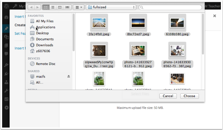 Select files in the standard file browser