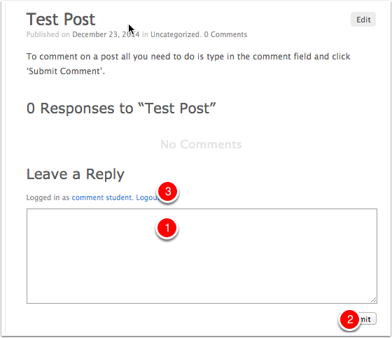 Test Post « pupil admin comments