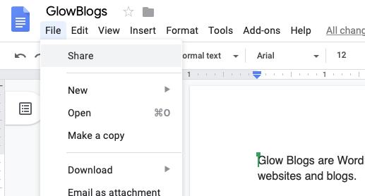Google Docs Share menu