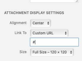 Screenshot of Attachment Display settings in add media screen
