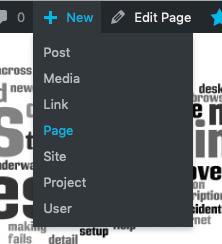 Admin Bar -> + New -> Page