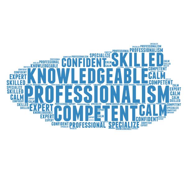 professional-cloud