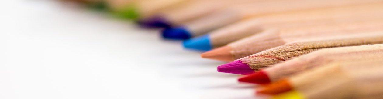 Student primary teacher blog