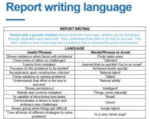 report-writing-language