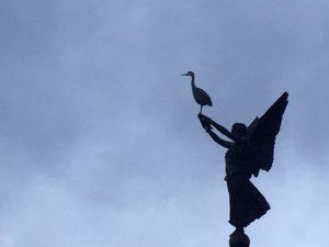 Heron on statue