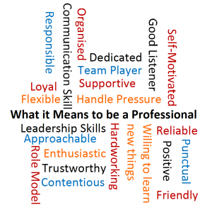 Professional Qualities
