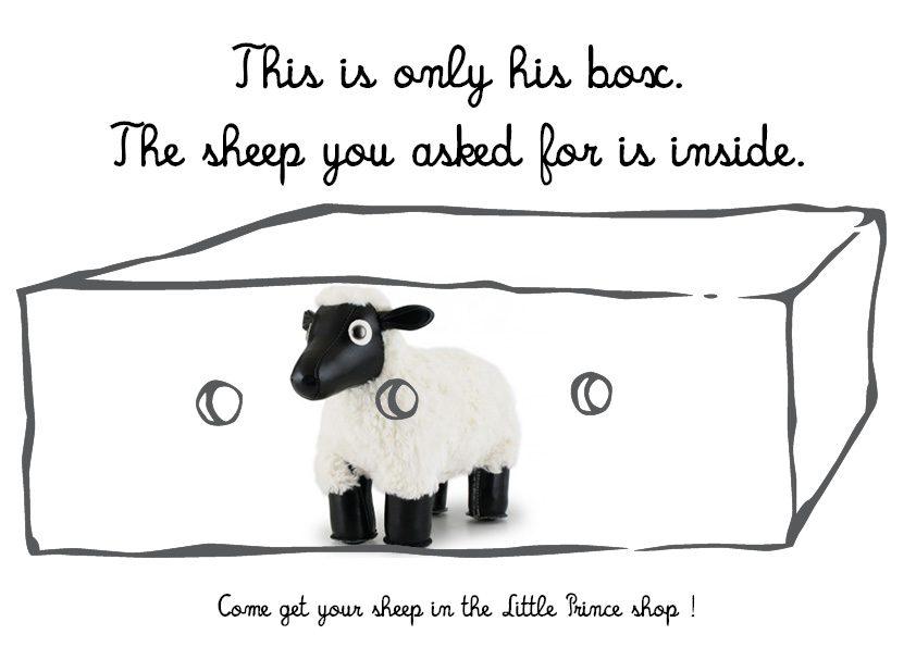 Sheep P7 St Thomas P S