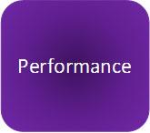 performance button