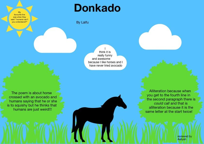 Donkado reviewed by Aaliyah 2