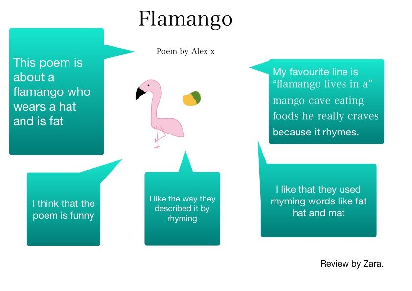 Flamango review Zara 2