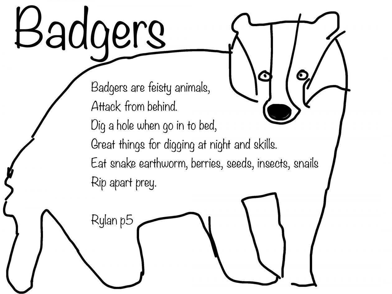 Badger Rylan