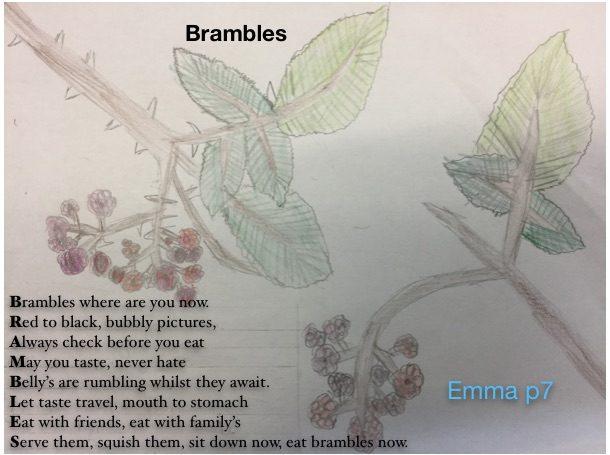 Bramble Emma