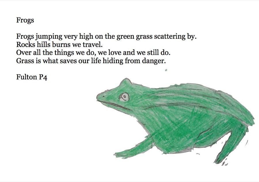 Frog - Fulton