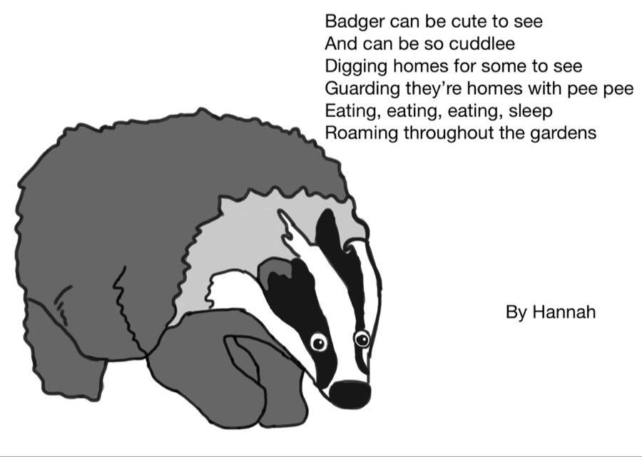 Badger Hannah