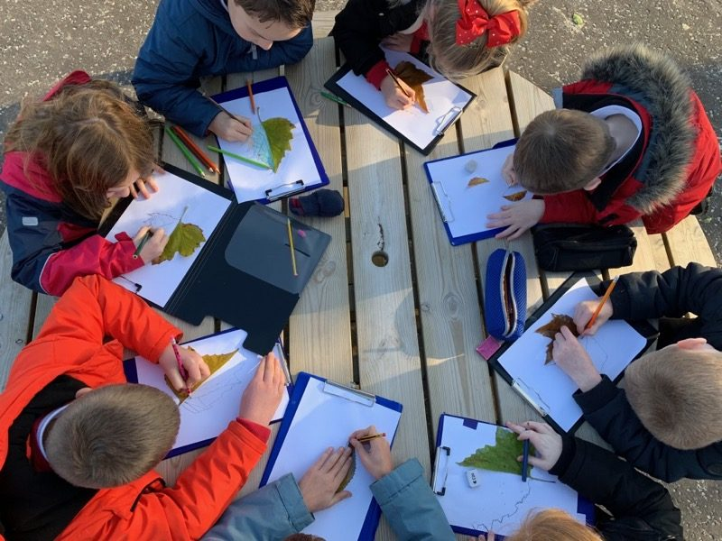 Children drawing leaves