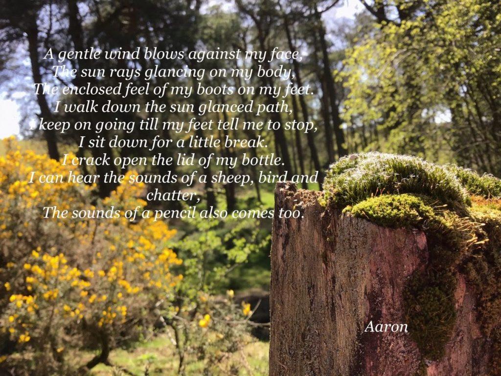 Arron's poem