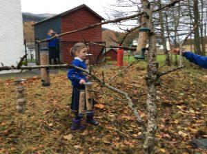 Keeping the birds happy at Kenmore School