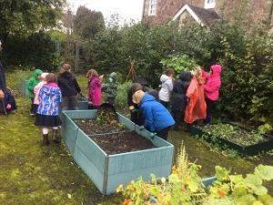 gardening-club