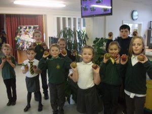 harvesting-apples