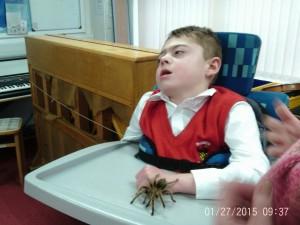 Oh Charlie, that tarantula is huge!